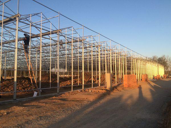 北京奥运森林公园温室钢结构
